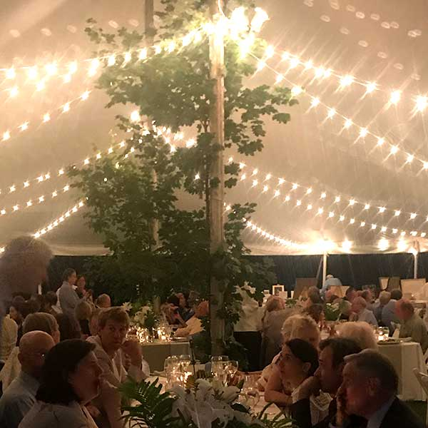 Bistro lighting is just one of the many options found in Columbia Tent Rentals Event Lighting Rental options