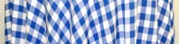 Table Linens Rental feature blue check tablecloth