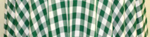 Table Linens Rental from Columbia Tent Rentals feature green check tablecloth